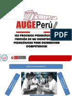 PROCESOS PEDAGÓGICOS PARA DESARROLLAR COMPETENCIAS 2018 (1).pdf