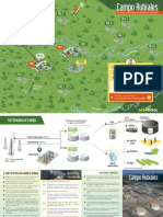campo.pdf