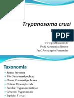 parasito_pos_01 chagas.pdf