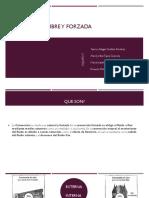 EQUIPO 5 - CONVECCION LIBRE Y FORZADA - PROBLEMAS - UNIDAD 5.pptx