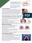 enfwermedades respiratorias