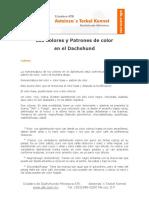 colores_y_patrones_en_dachshunds.pdf