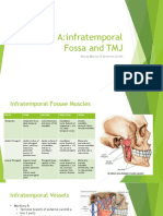 table a- tmj and infratemporal fossa