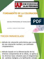 364339426 Fundamento Tincion Pap