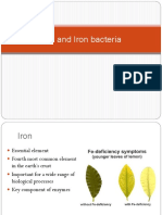 Iron and Iron Bacteria