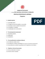 Praticaproclaboral Programa