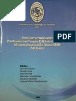 GERD PGI Konas 2013.pdf