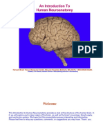 HBTRC-Neuroanatomy-2014.1.pdf