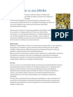 arboles informacion.docx