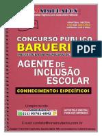 AGENTE DE INCLUSÃO ESCOLAR