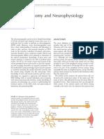 2 Anatomy and Neurophysiology
