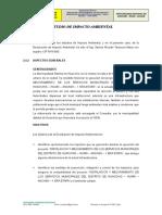 2.4 Estudio de Impacto Ambiental