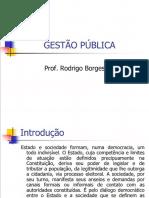 Rodrigo Borges - Gestão Pública