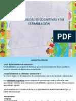 Habilidades Cognitivas P y L (1)
