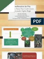 desfibradora pita (1).pptx