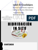 Hibridación in Situ F