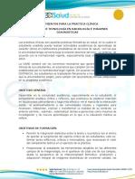 Lineamientos_práctica_profesional_TRID_3.pdf