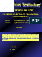 Seguridad ambiental 2