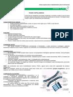 07 - Tecido Cartilaginoso.pdf