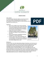 Washington Square arborist report 7-25-18
