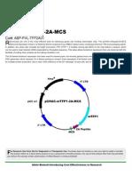 pCHAC-mTFP1-2A-MCS