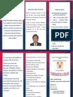 tripticowalterflores-160725200342.pdf