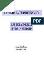 00000014 FISICA LEYES DE LA TERMODINAMICA LEY DE LA ENERGIA LEY DE LA ENTROPIA.pdf