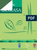 Manual Energia Biomasica.pdf