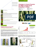 Wheat Case Study Guide Number 2