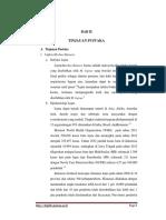 morbus hansen1.pdf