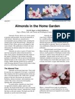 Almonds in the Home Garden