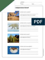 Ecosistemas_Ejercicios_2.pdf