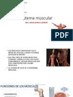 Clase 1. Sistema Muscular