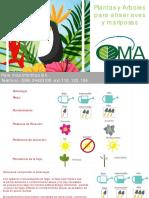 Catálogo Plantas y Árboles Para Atraer Pájaros y Mariposas
