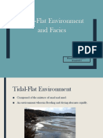 Tidal Flats Report