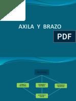 AXILA  Y  BRAZO anatomia.pptx