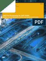SAP File Processing for SAP HANA En