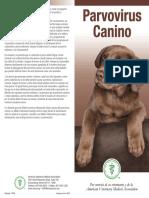 Parvo Brochure Spanish