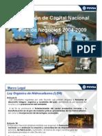 Formacion Capital Nacional PDVSA 2004