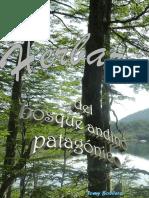 Herbario bosque patagonico
