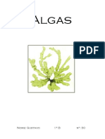 Algas.docx