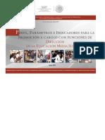 perfiles parametros e indicadoresPROMOCION_DIRECCION_EMS_2018_19012018.pdf