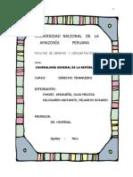 Contraloria General de La Republica - Monografia