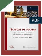 4tecnicas_de_guiado(1).pdf