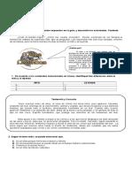 313147115-Prueba-Comprension-Lectora-Mitos-y-Lyendas.doc