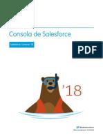 Salesforce Console