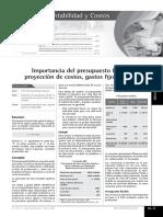 145698994-PRESUPUESTO-FLEXIBLE-pdf.pdf