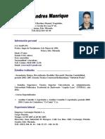 Yenser Manrique Curriculum