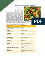 exposicion-frutas.docx