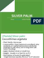 SilverPalm Ken